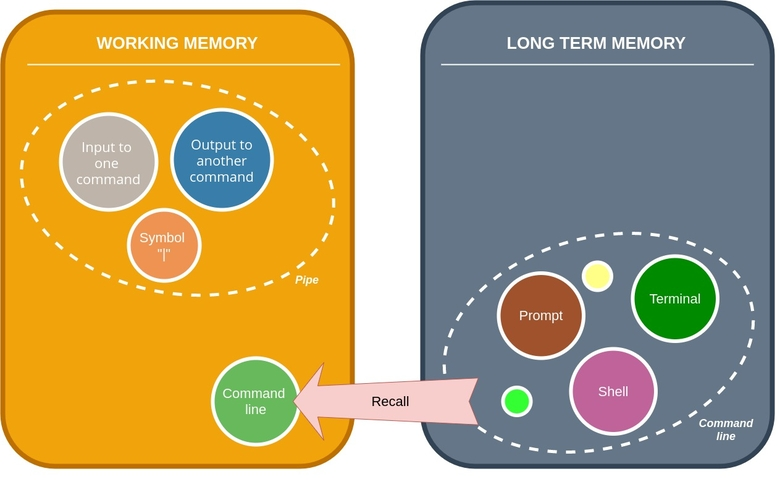 Learning in the working memory